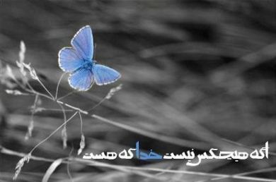 http://mehdi.mirani.ir/wp-content/themes/mehdi/images/logo2.jpg