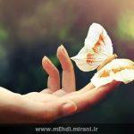 قسم به نقاشِ بالِ پروانهها